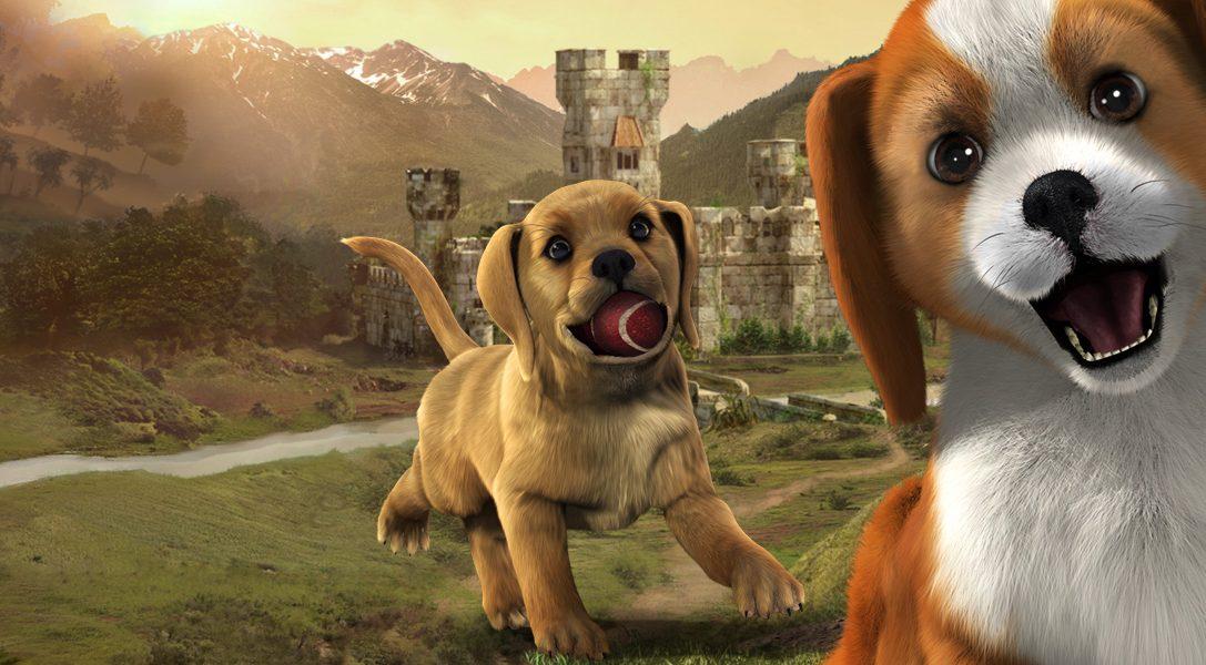PlayStation Vita Pets : la date de sortie et un détail remarquable qui donnera vie à votre chien