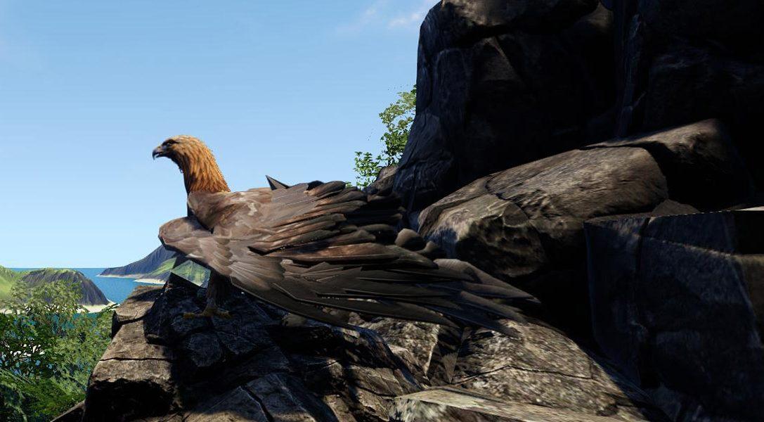 Wander, un MMO fantasy à venir sur PS4