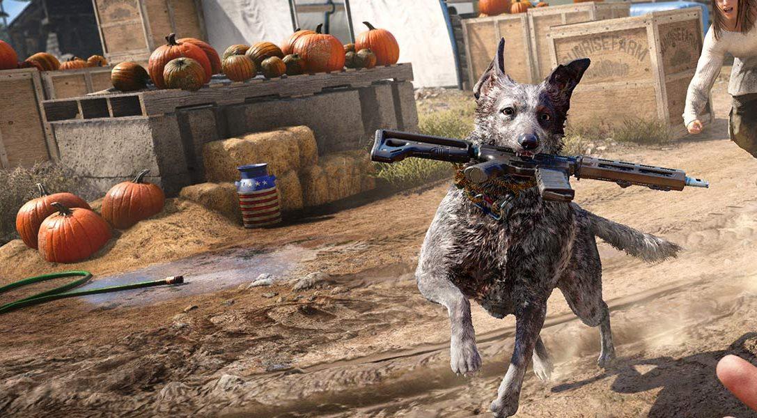 8 choses que nous avons apprises sur Boomer le chien et les autres animaux sauvages de Far Cry 5