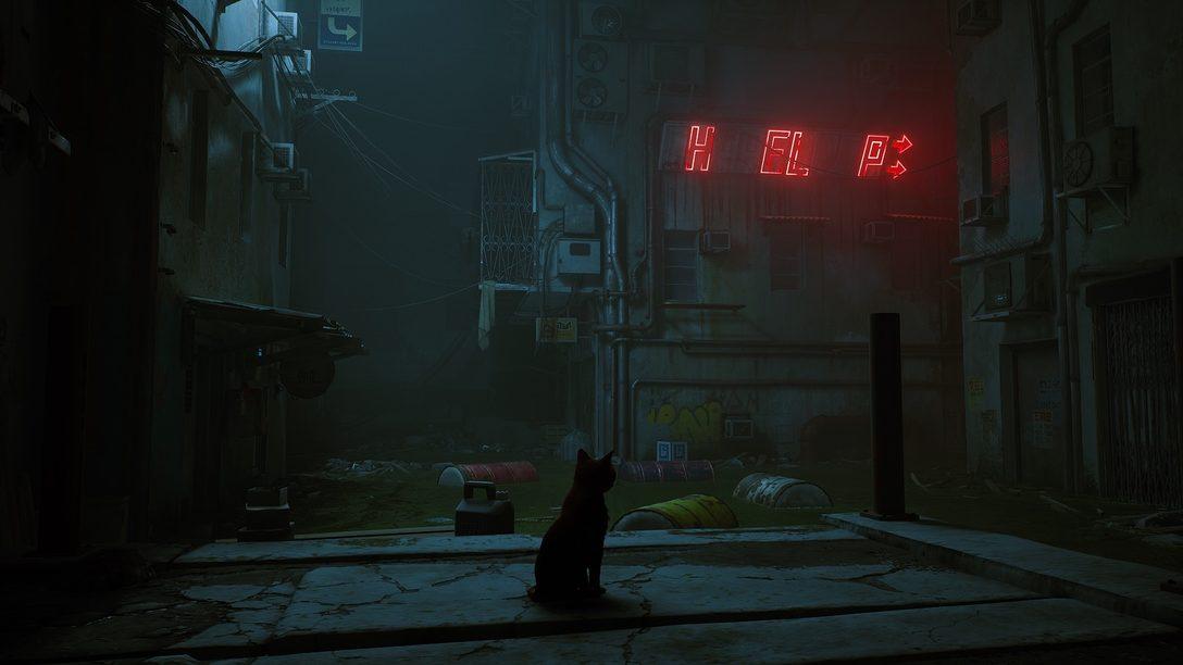 Un aperçu approfondi de Stray et de son monde baigné par la lumière des néons.